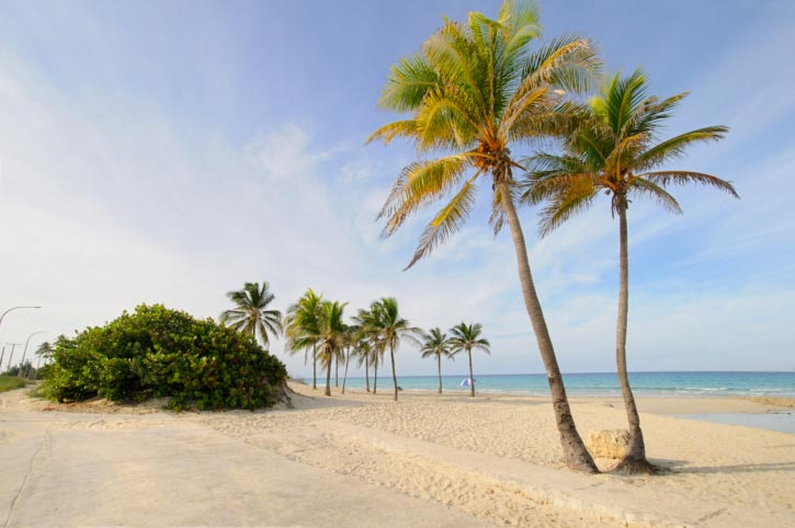 A Picture of Tropical Beach Paradise at Santa Maria, Cuba