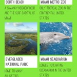 Miami Travel Infographic, Facts about Miami
