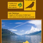 Golden Mountains of Altai Travel Infographic