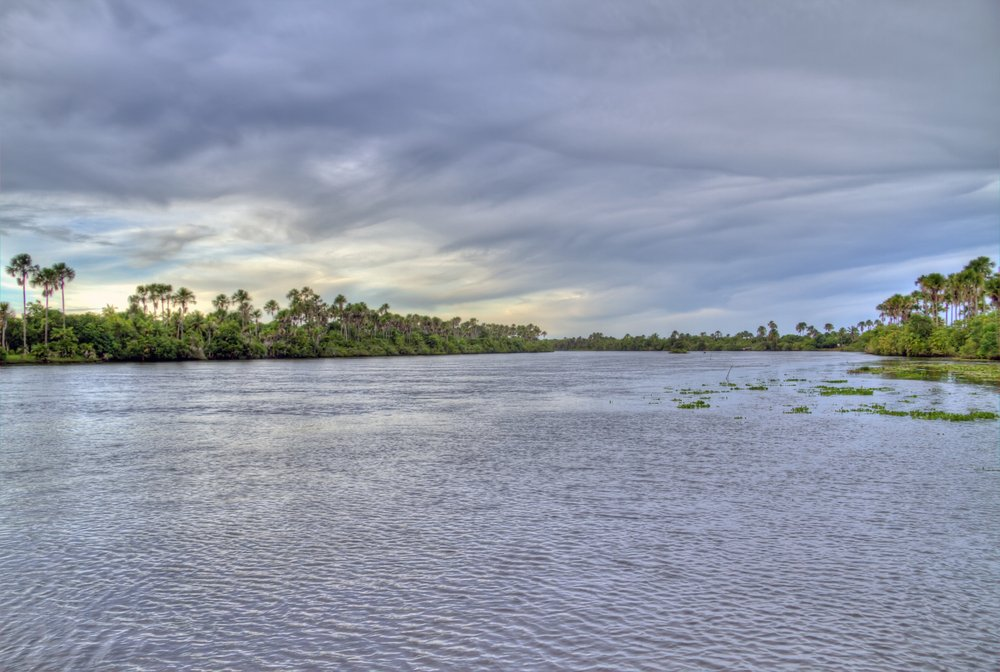 Amazon River Image