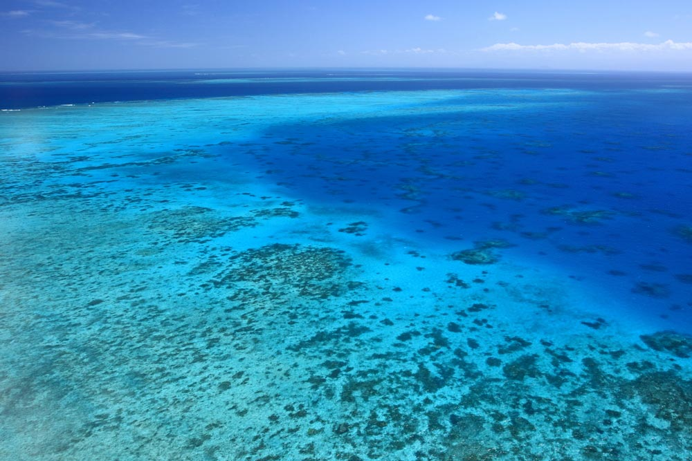 Great Barrier Reef Travel Blog