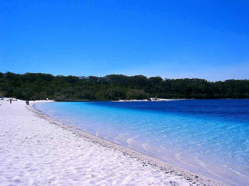 Picture of Fraser Island Lake Mckenzie