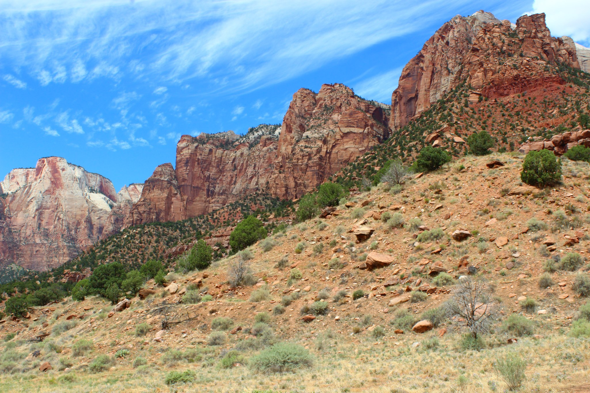 Zion National Park Image