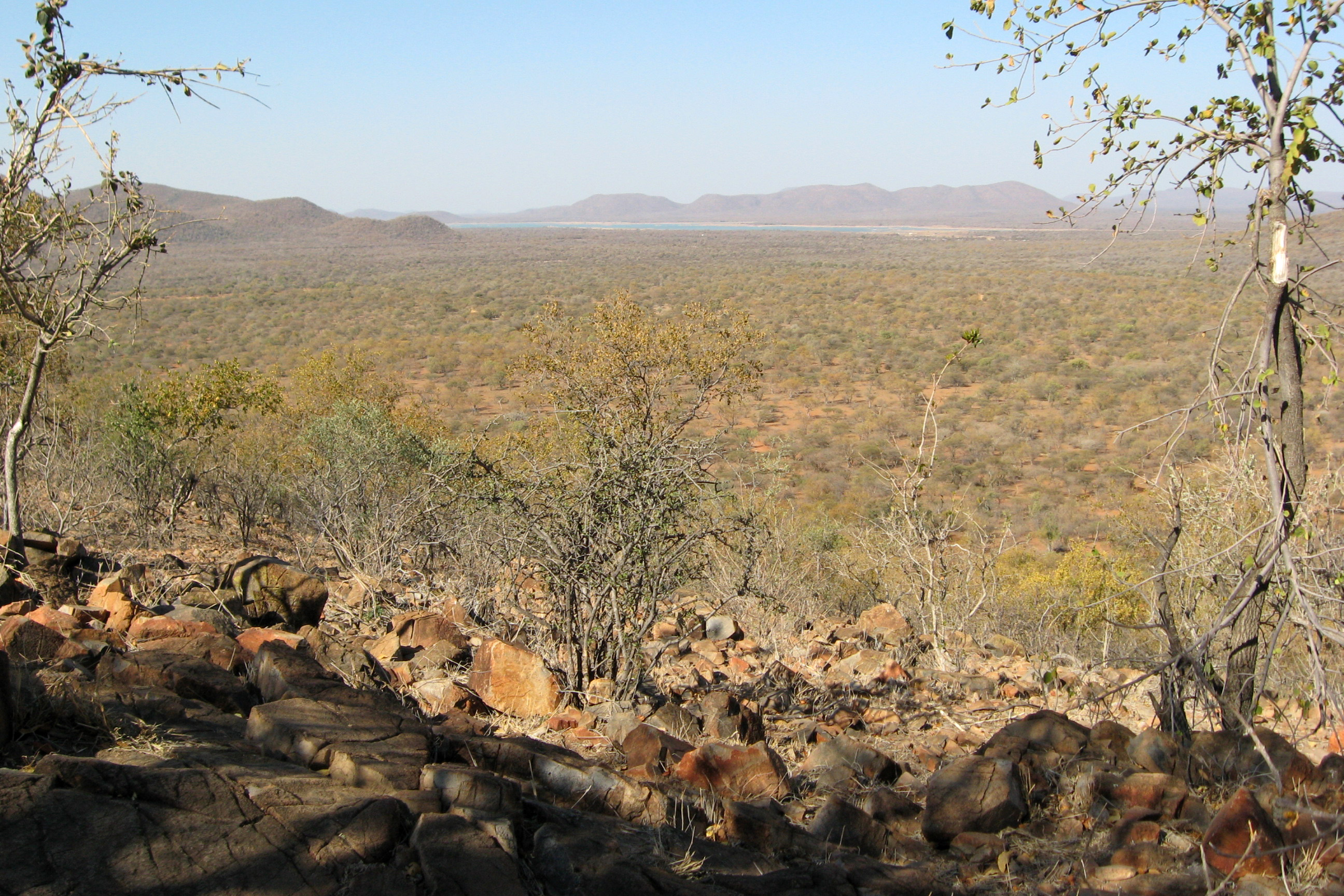 Mokolodi Nature Reserve - A wondrous excursion spot for those visiting Botswana