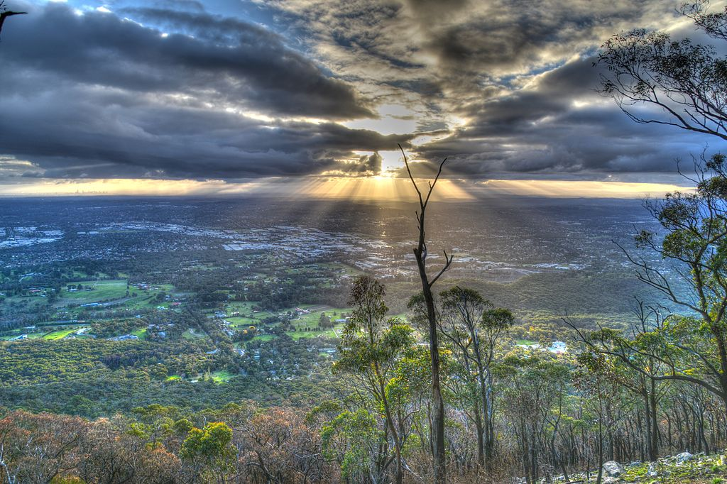 Dandenong Ranges in Victoria