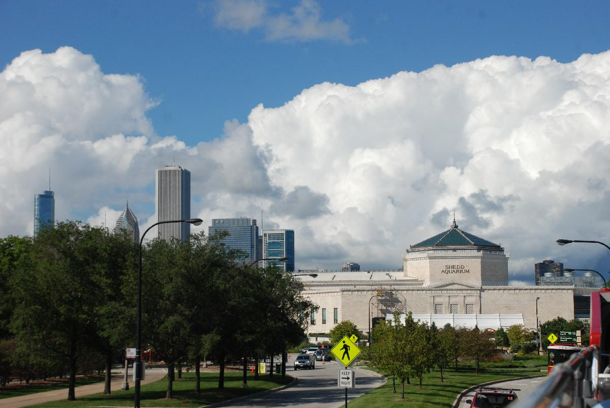 Shedd Aquarium and the Skyline in the back,Chicago