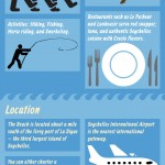 Anse Source d'Argent Beach Infographics