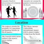 Arpoador Infographic