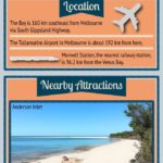Venus Bay Infographic