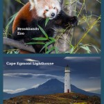 Egmont National Park Infographic