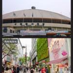 Namdaemun Market Infographic