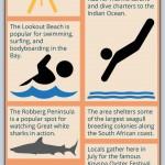 Plettenberg Bay Infographic