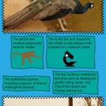 Al Ain Zoo and Aquarium Infographic