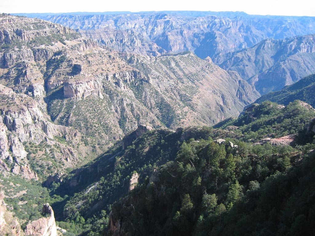 Copper Canyon In Mexico (Barrancas Del Cobre)