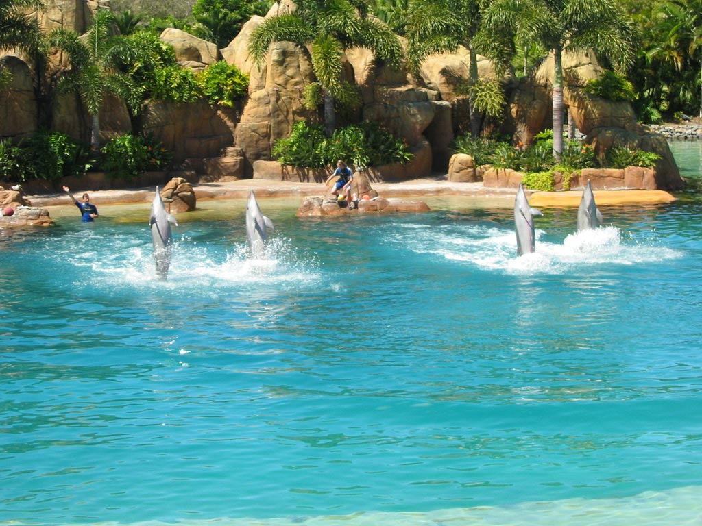 Sea World in Australia