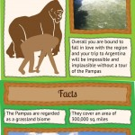 Pampas Infographic