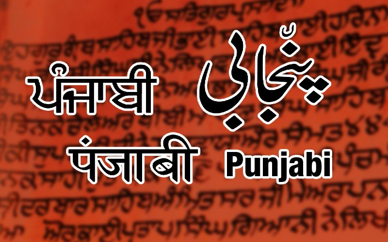 Punjabi has two major writing systems: Gurmukhi, which is a Brahmic script, and Shahmukhi, which is an Arabic script.