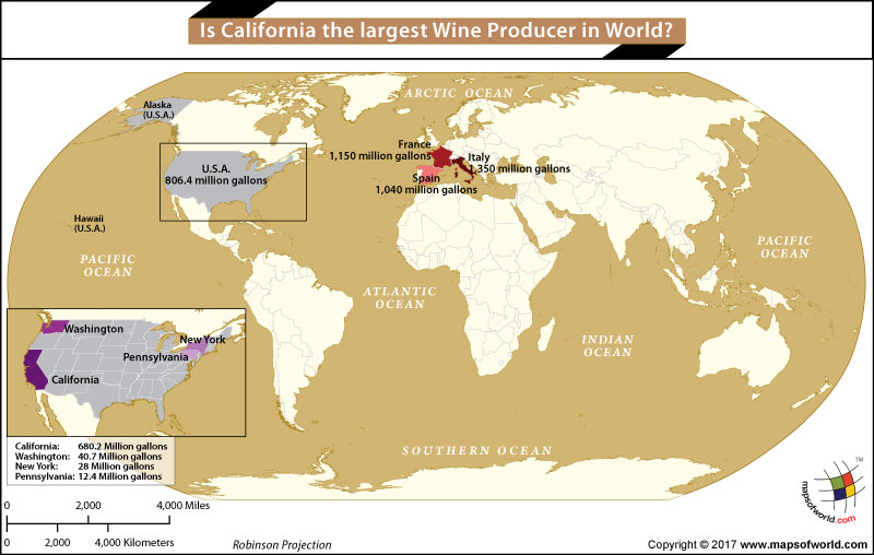 World Map showing the Largest Wine Producers in the World
