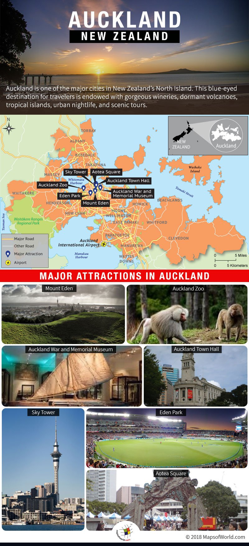 Infographic Depicting Auckland Tourist Attractions