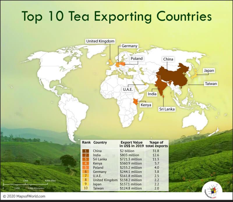 World Map Highlighting Top 10 Tea Exporting Countries