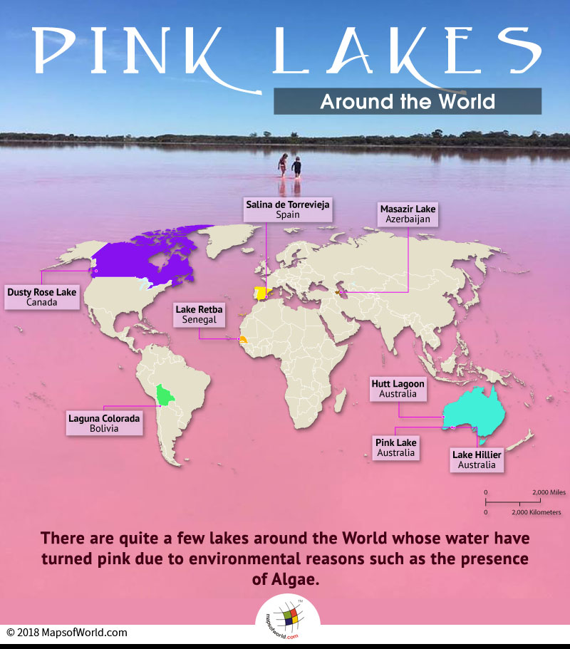 World map depicting pink lakes around the world