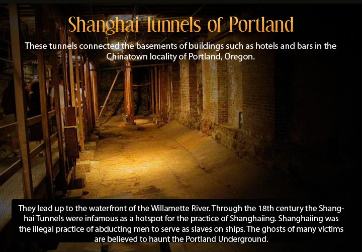 Infographic describing the underground city of Shanghai