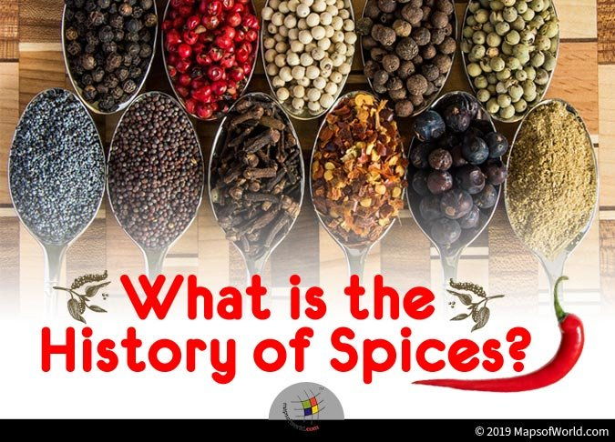 Spices are Mainly Found in Tropical Areas
