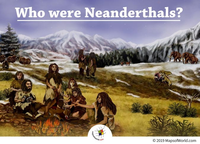 The First Neanderthal Bones were Discovered in 1856
