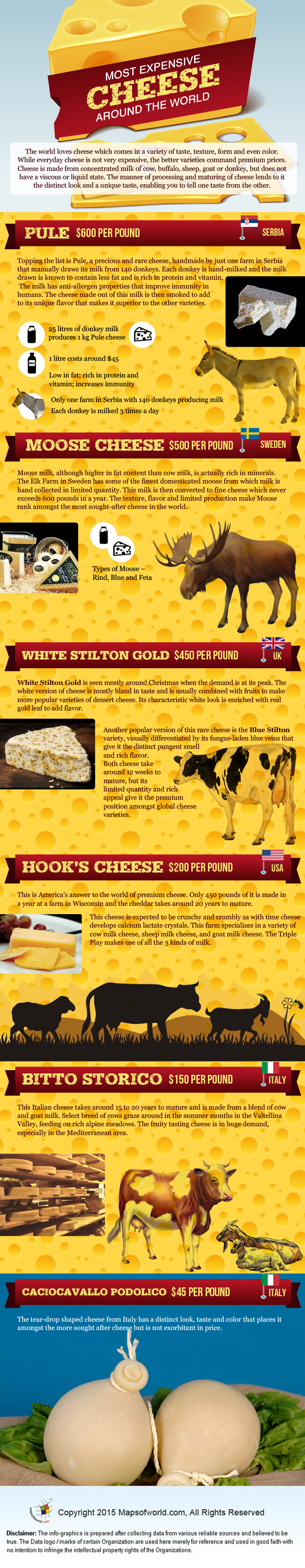 Infographics on Most Expensive Cheese around the World