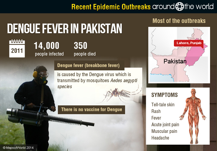 dengue fever essay pakistan Free essays on essay om dengue fever in pakistan 2011 get help with your writing 1 through 30.