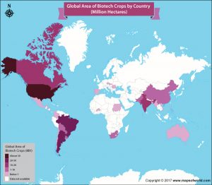 Get an Insight into the Area of Biotech Crops by Country
