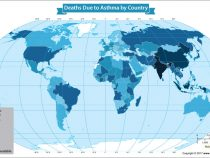 Death Rate for People With Asthma Rising Around the World