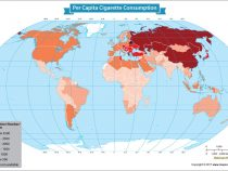 A Glimpse Into How Much the World Smokes Cigarettes