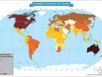 Analyzing the Ecological Footprints of Each Nation