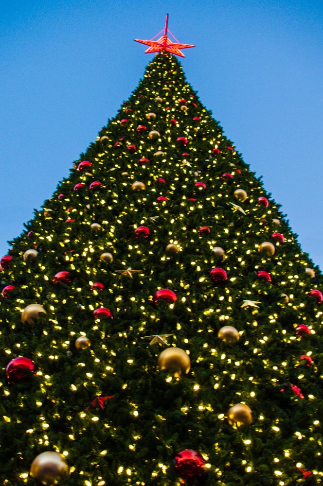 Christmas Tree Lighting at Union Square, San Francisco