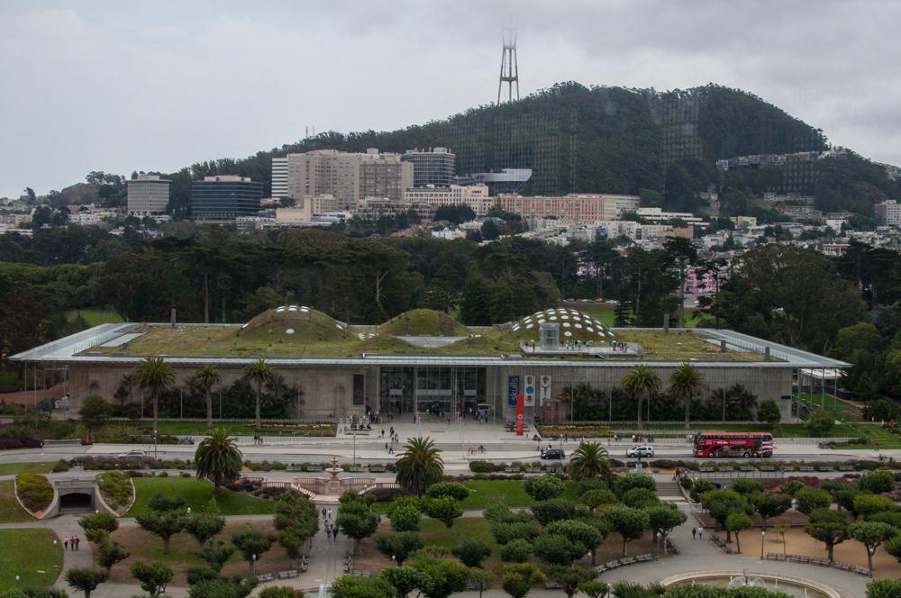 Natural Science Museum San Francisco