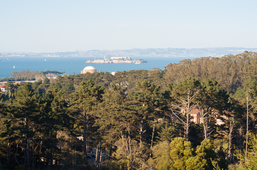 Views from the lookout points in the Presidio