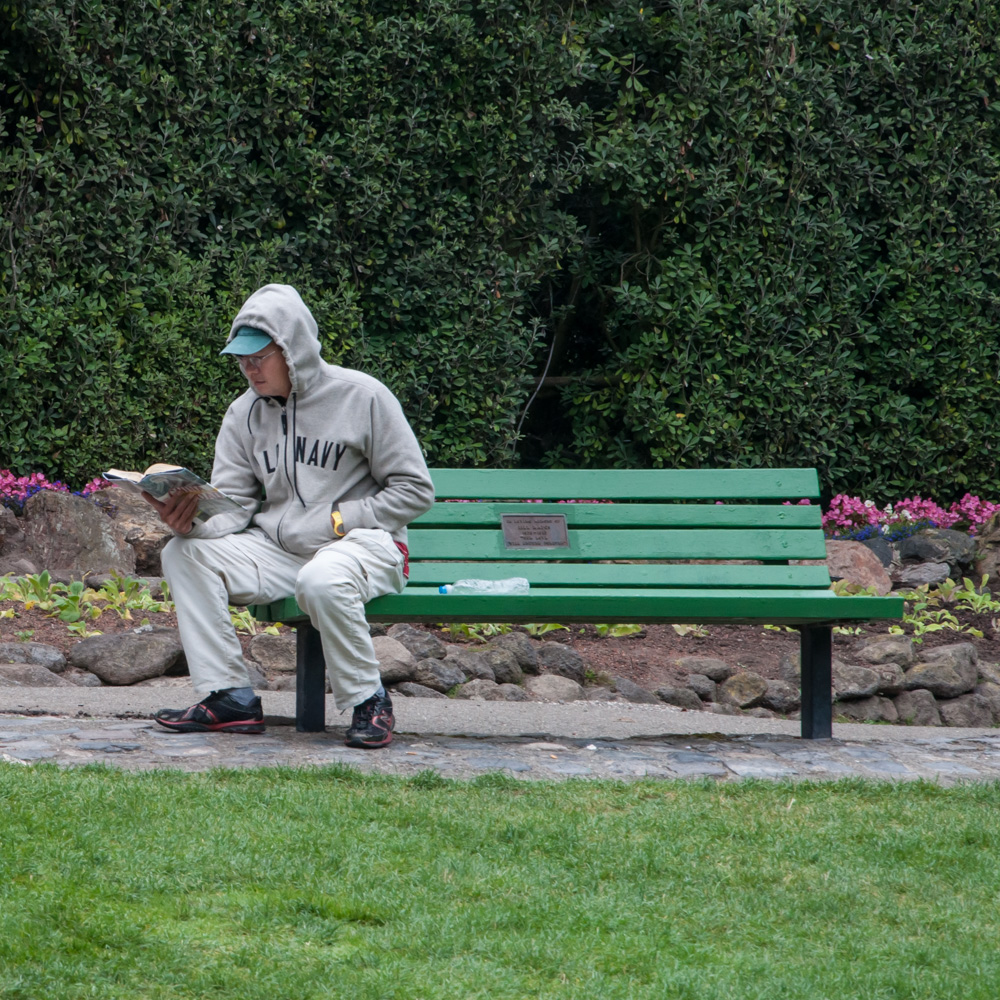 A man reads on a bench in a garden in Golden Gate Park