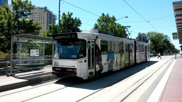 City trams with clear tramways for smooth commuting
