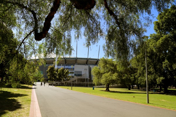 Greenery around MCG