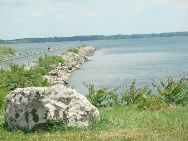 A pituresque embankment on the drive down Lake Seneca