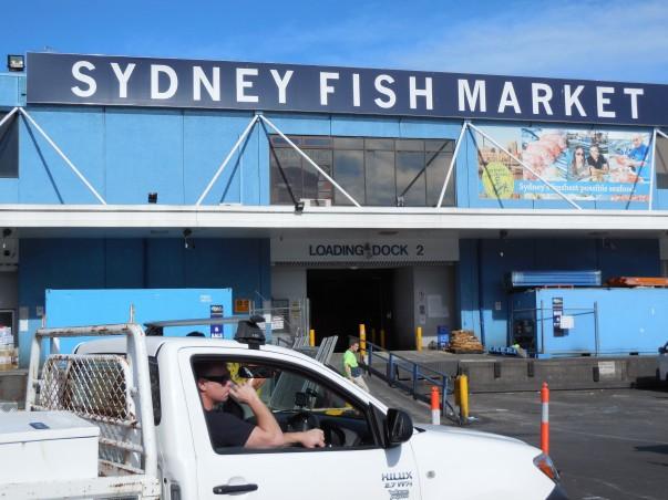 Sydney Fish Market Exterior