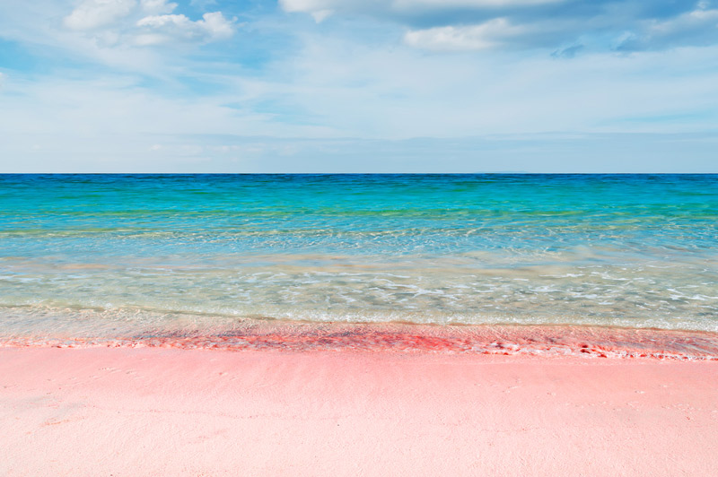 Top 6 colorful beaches in the world you may not know for Bahamas pink sand beaches