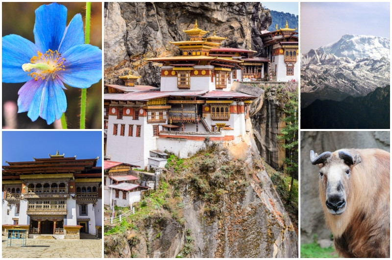 Top 7 Facts about Bhutan That Will Surprise You