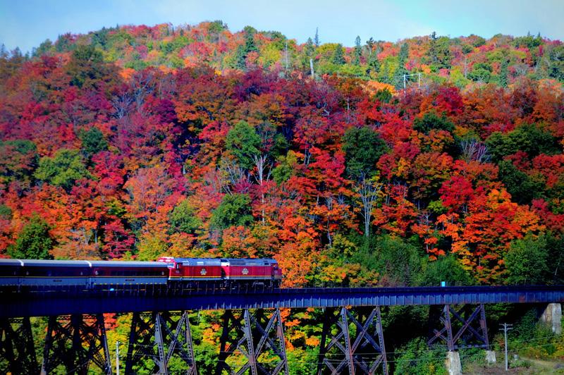 Agawa Canyon Tour Train image