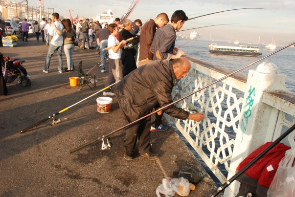 It isn't easy to be a fisherman - Galata Bridge