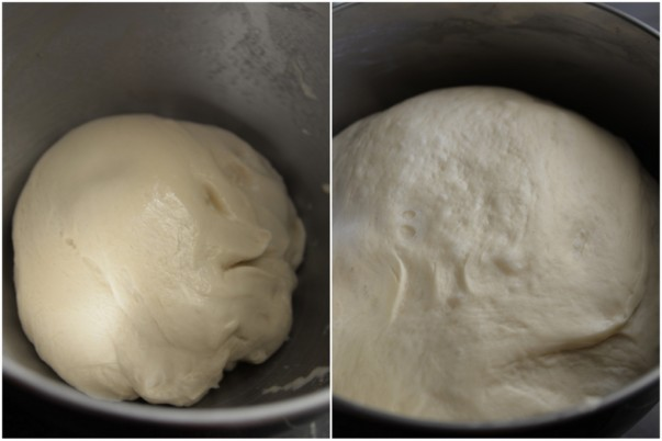 Dutch crunch bread - Dough before and after rising