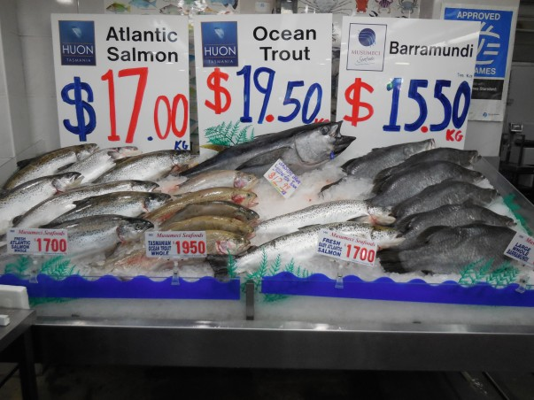 Sydney fish market tour information travel guide photo for Fish market prices
