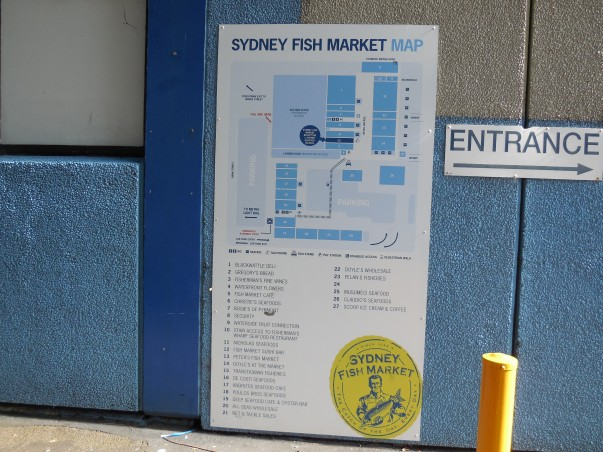 (You can't get lost) Even if you try to. Sydney Fish Market needs this.