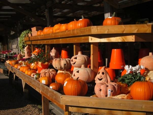 Halloween Celebrations in England